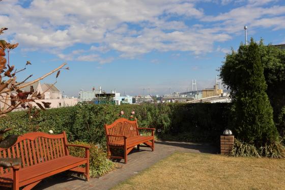 横浜・アメリカ山公園のバラがある風景