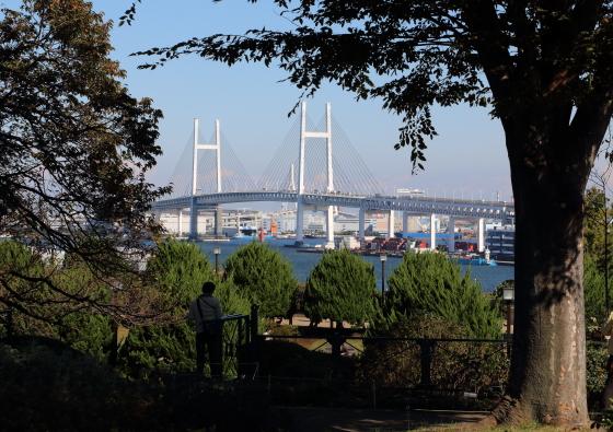 港の見える丘公園からの風景