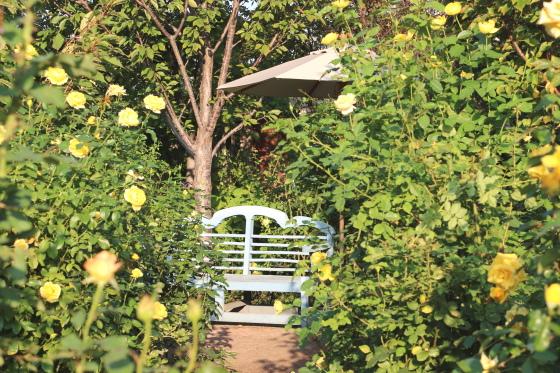 横浜イングリッシュガーデンの園内