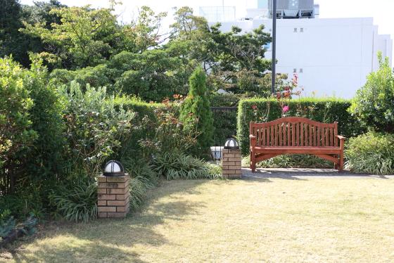 横浜・アメリカ山公園・バラ園の風景