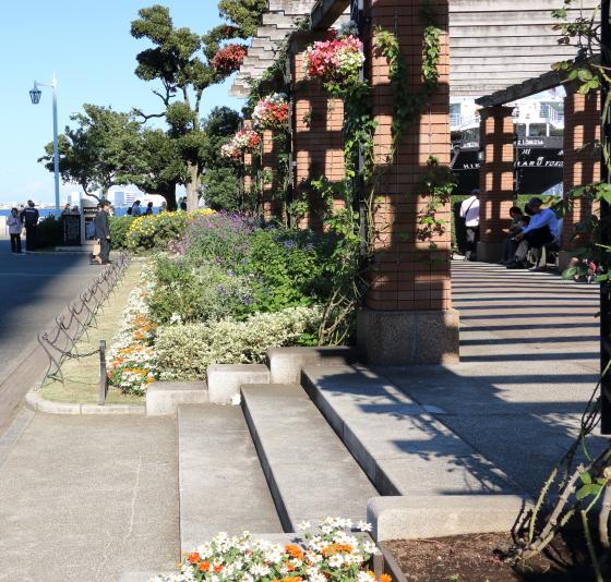 横浜・山下公園の風景