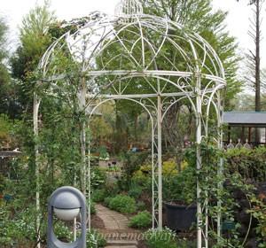 多摩グリーンライブセンター内のバラ園 つるバラ