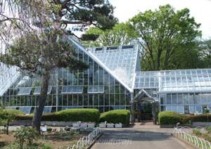 東京都薬用植物園の入り口正面