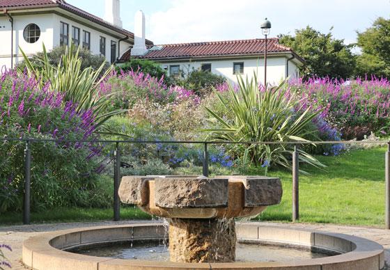 バラ 港の見える丘公園