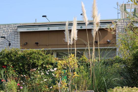 プロトリーフ ガーデンアイランド玉川店の外観