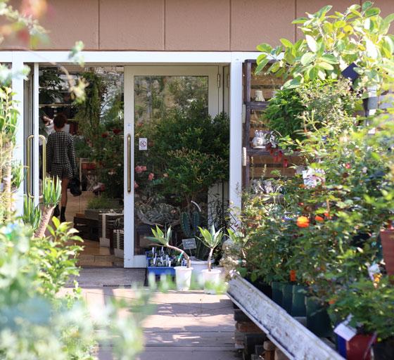 プロトリーフ ガーデンアイランド玉川店の屋上には庭園がある