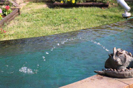 プロトリーフ ガーデンアイランド玉川店の屋上庭園の池