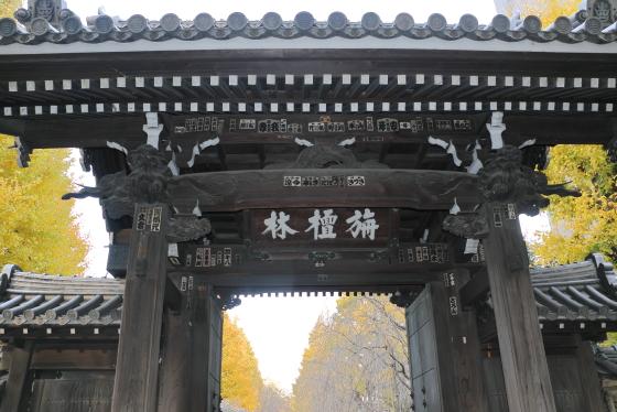 駒込吉祥寺の山門
