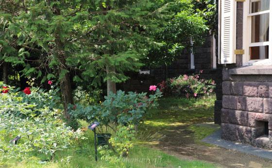 晴れた日の旧古河庭園の風景