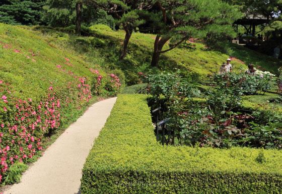 春の旧古河庭園の風景
