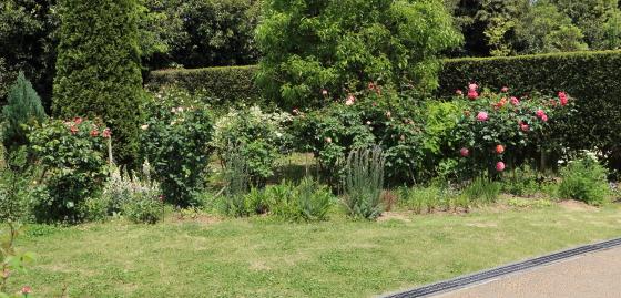 春の花菜ガーデンにて