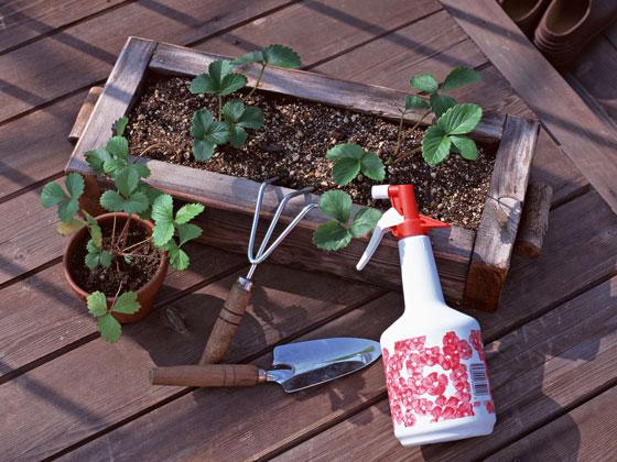 肥料を施すための用具類です