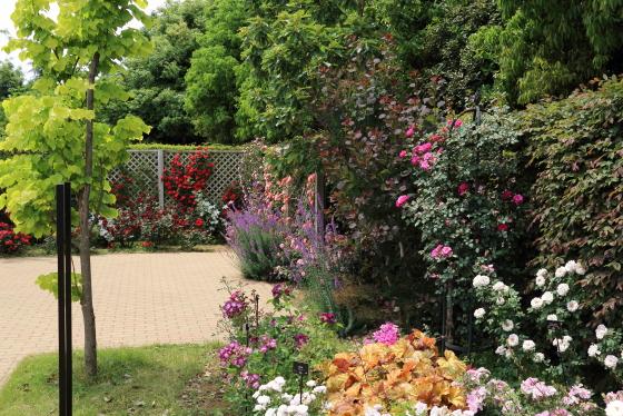 花菜ガーデン・バラ園の風景