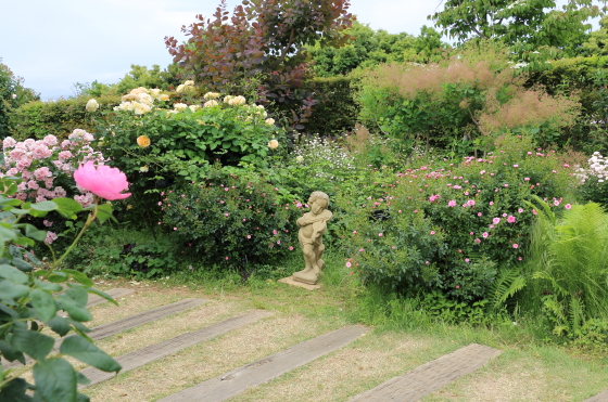 春の花菜ガーデン・バラ園