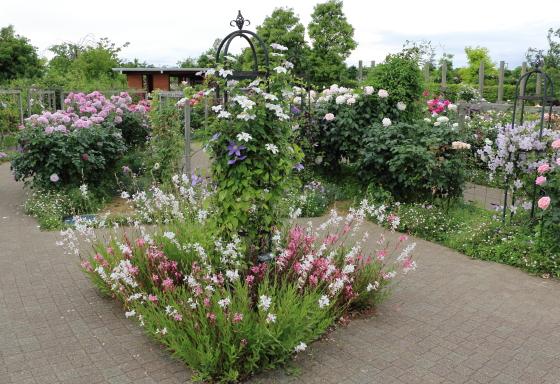 春の花菜ガーデンの景色