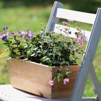 園芸のイメージ画像