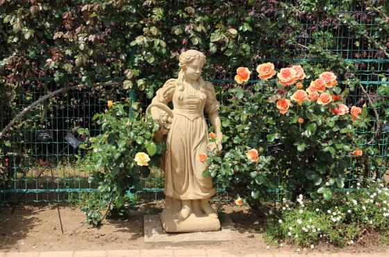 春の花菜ガーデン風景