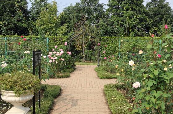 秋の花菜ガーデンの風景