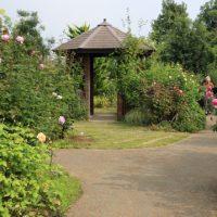 秋の花菜ガーデンの風景です