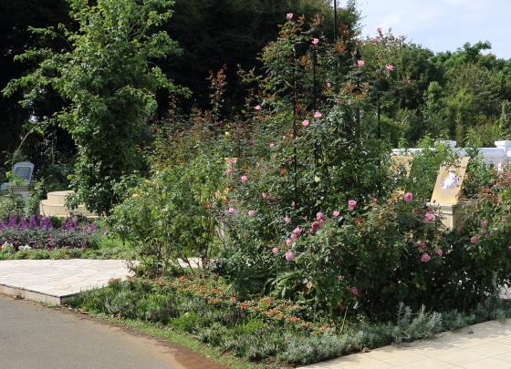 ベルサイユのバラコーナーの風景