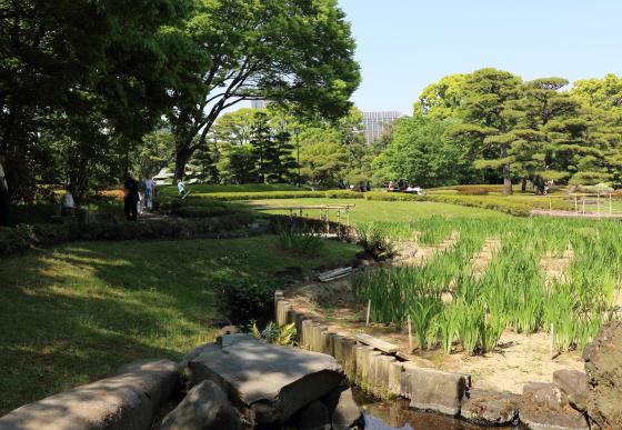 皇居東御苑の風景 春