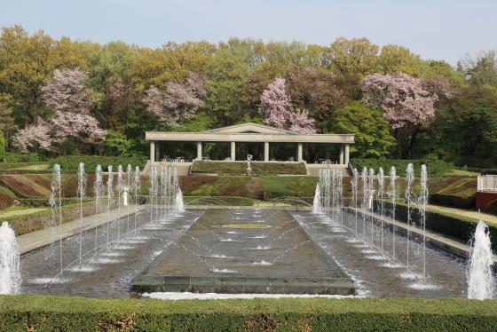 神代植物公園・バラ園の噴水