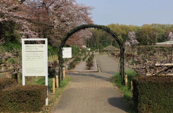 バラ園の入口