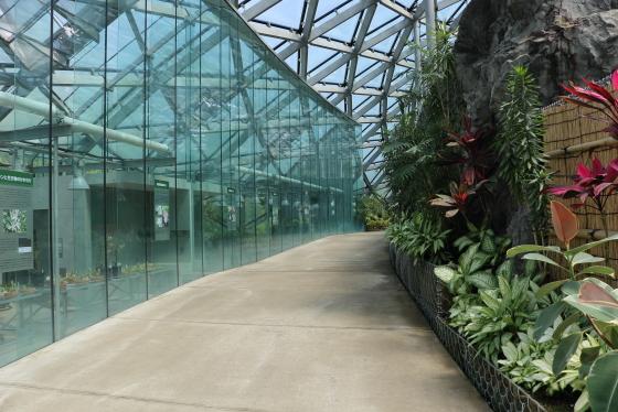 新宿御苑の温室