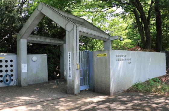 昭和薬科大学の校門です