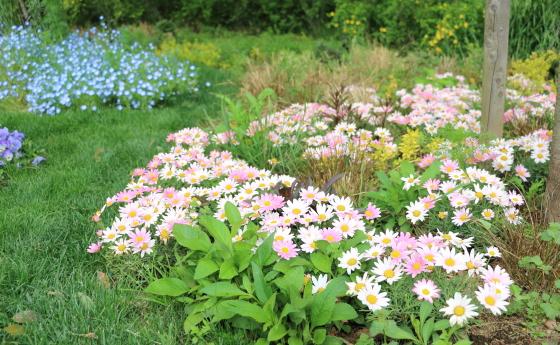 里山ガーデンの春風景