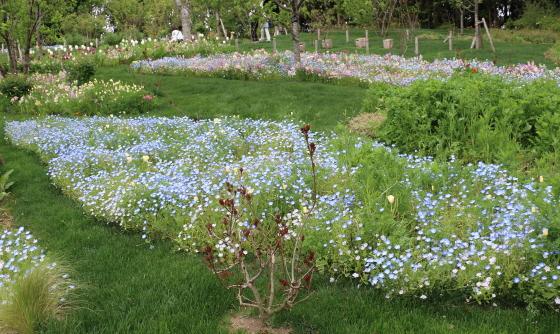春の里山ガーデンの風景