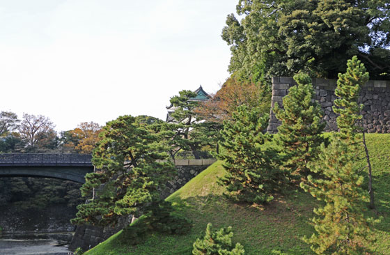 皇居 二重橋付近の紅葉も始まる