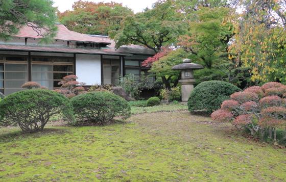小石川後楽園の紅葉はもう少し先だね