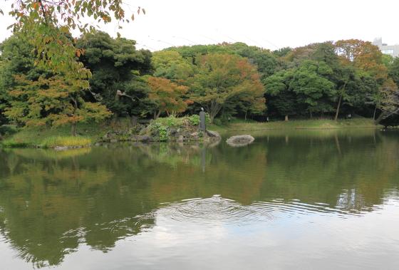 小石川後楽園は春には桜が咲きます