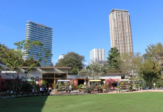 シェアーグリーン南青山の広い芝生広場