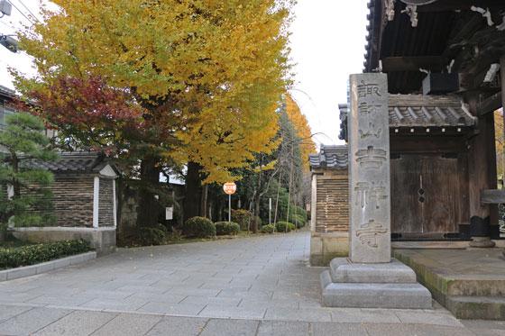 駒込の吉祥寺も山門