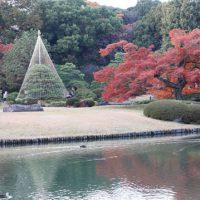 六義園の紅葉風景です