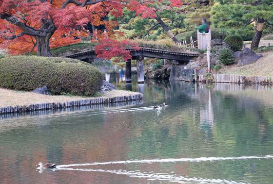 六義捐の秋の風景