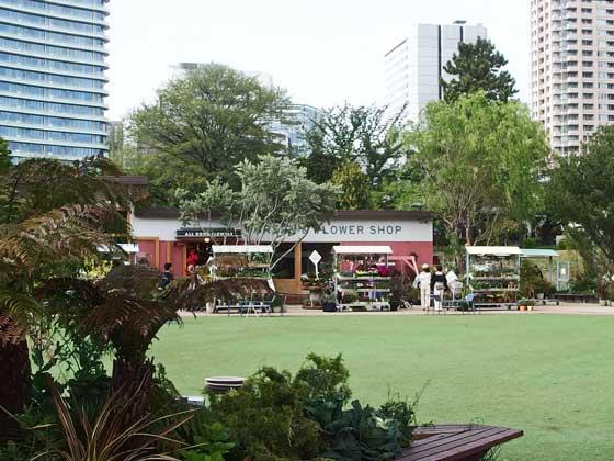 園内の中央は広い芝生広場です
