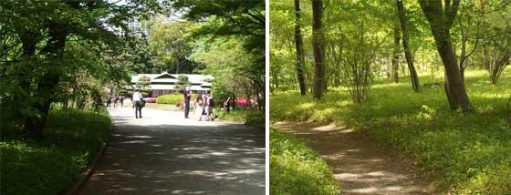二の丸庭園の風景