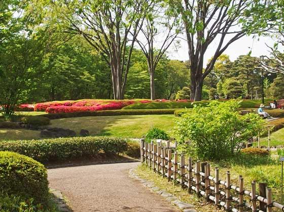 二の丸庭園の藤の花を訪ねて