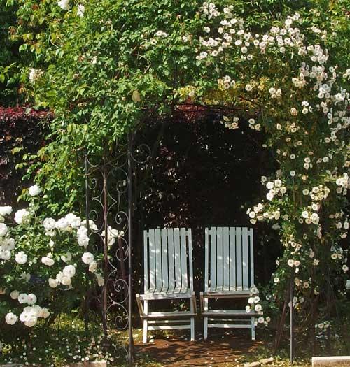 花菜ガーデンの春の風景