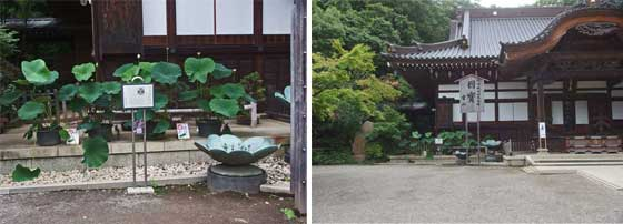 深大寺の境内2枚組画像