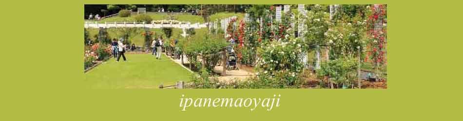 春の花菜ガーデンの風景 タイトル